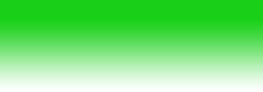 Fogger pour terrarium disponibles chez Aquario&Co !